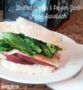 Grilled Apples and Pepper Jack Cheese Sandwich Recipe - Burnt Apple