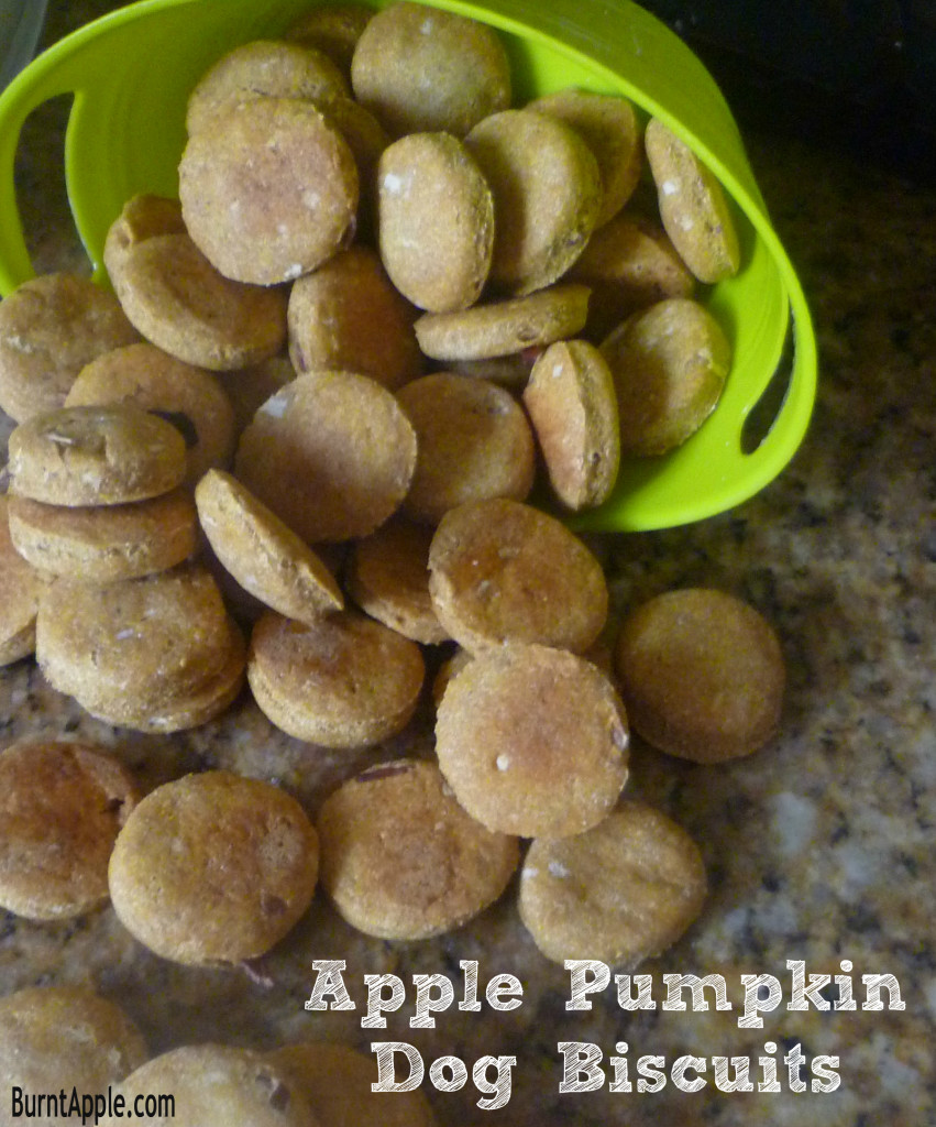 apple pumpkin dog treats