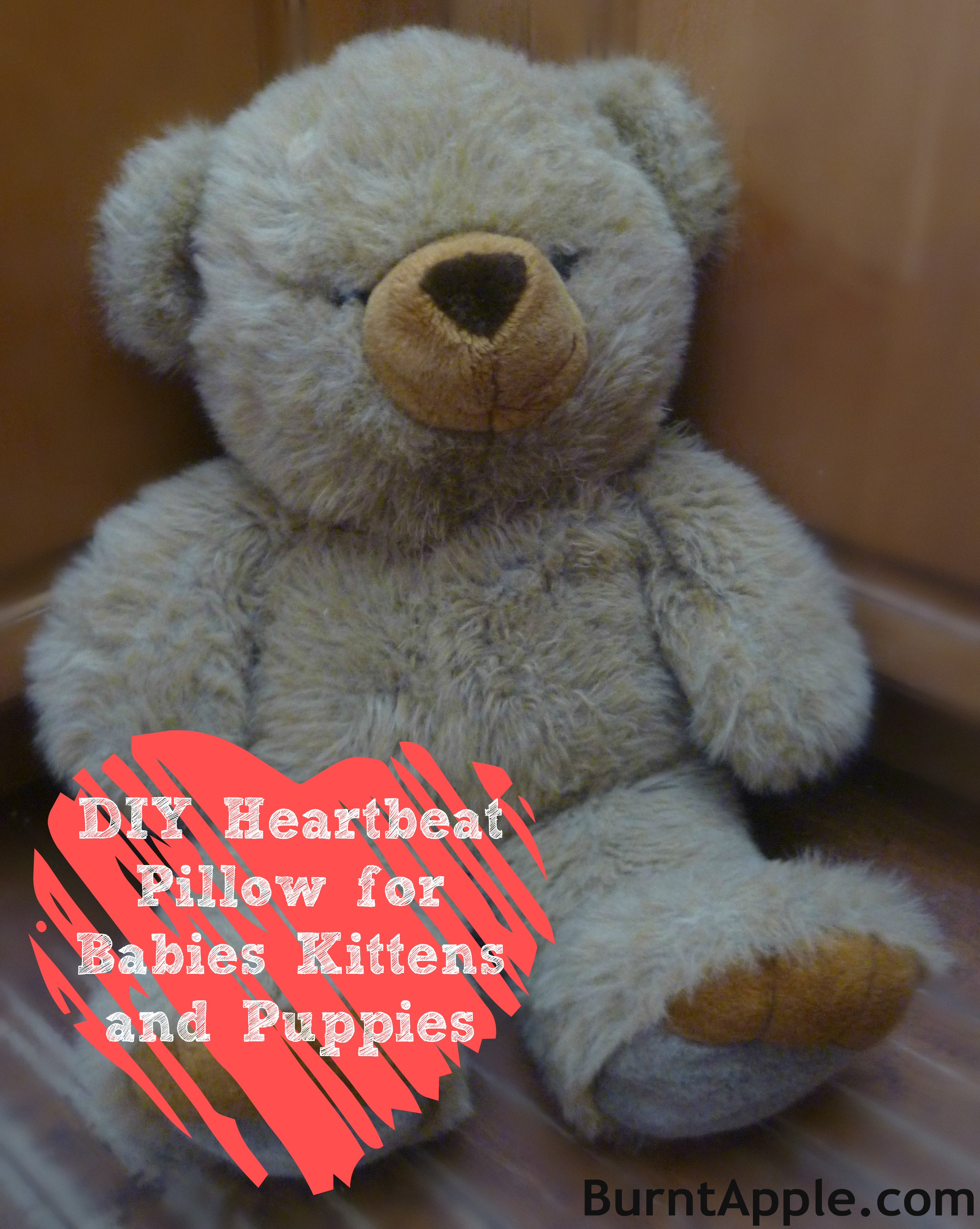 Diy Heartbeat Pillow For Puppies Kittens And Babies Burnt Apple