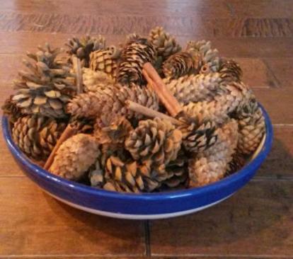 cinnamon pine cone recipe