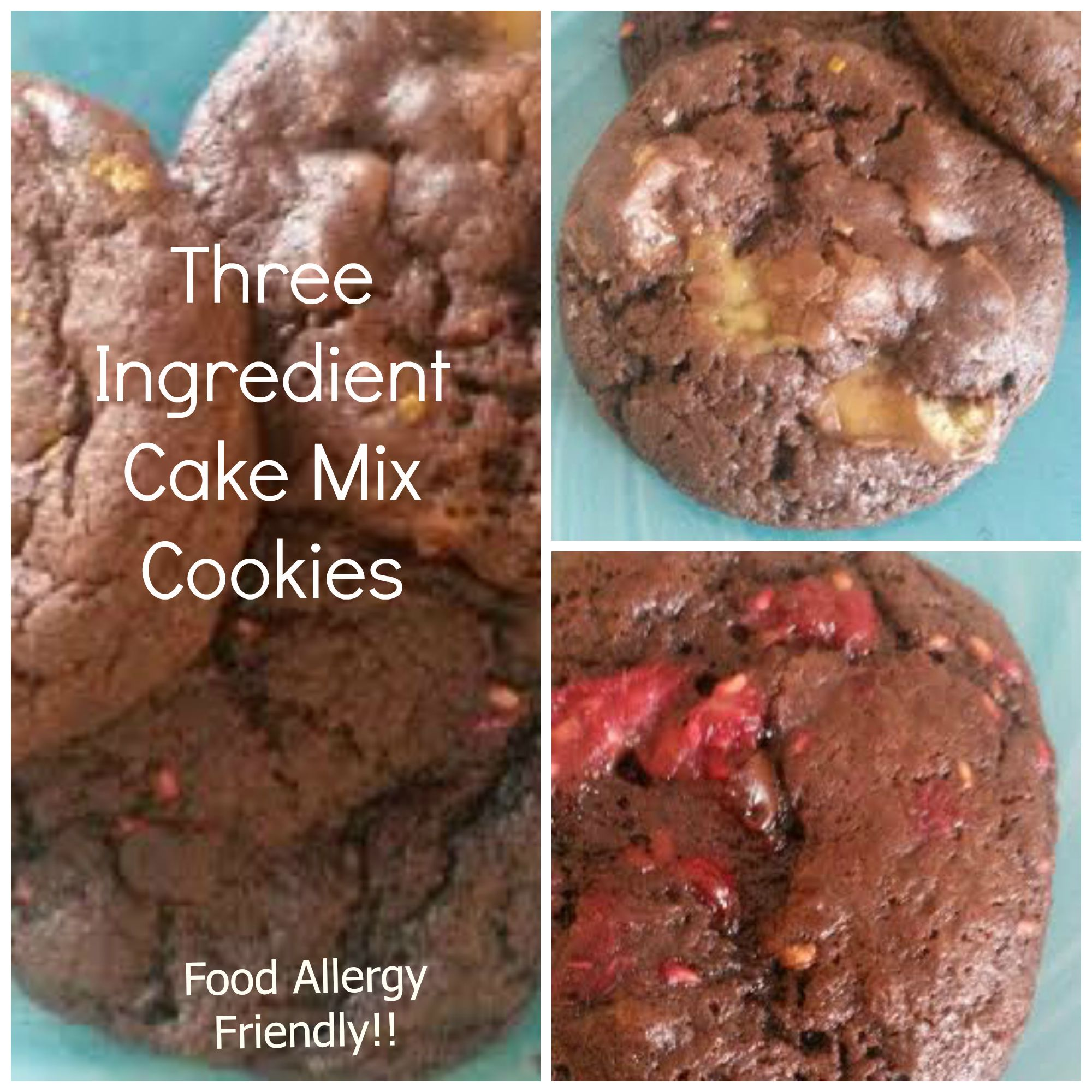 3 Ingredient Chocolate Cake Mix Cookies *Food Allergy Friendly ...