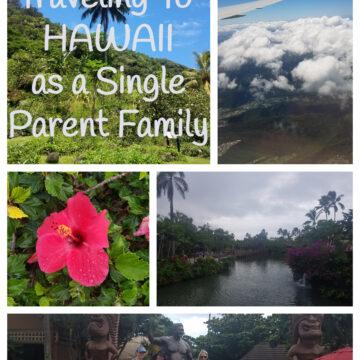 hawaii single parent