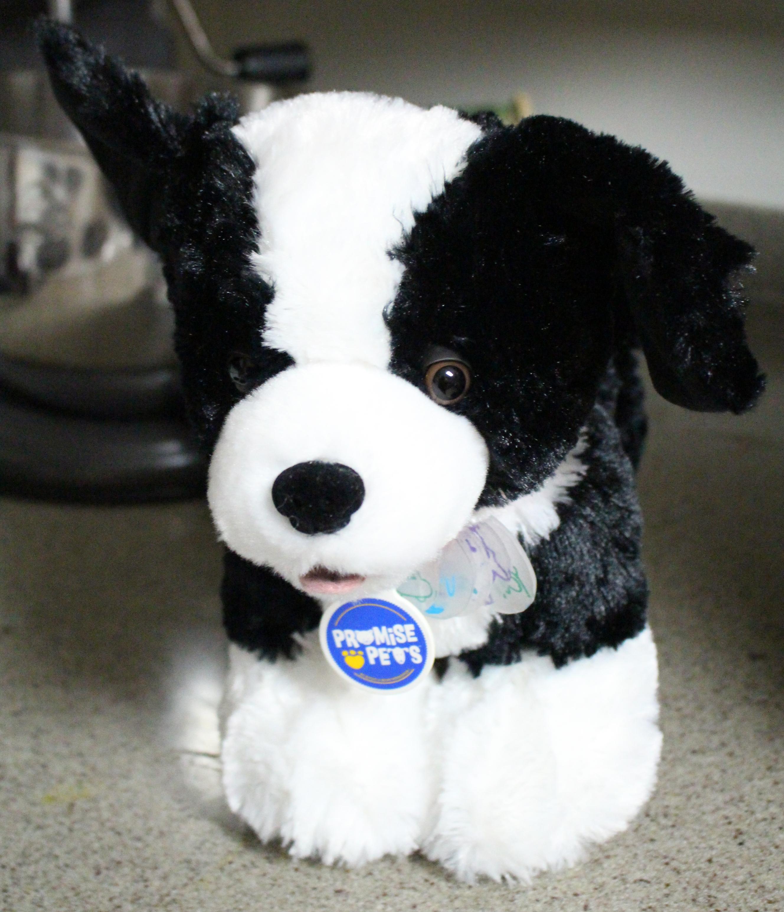 funeral stuffed animal