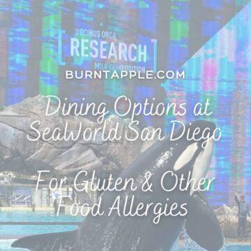 sea world gluten free food allergen friendly dine and drink bundle